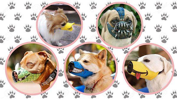 Rọ mõm chó thời trang