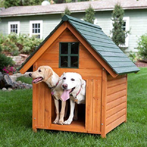 Cách Làm Chuồng Chó Đẹp