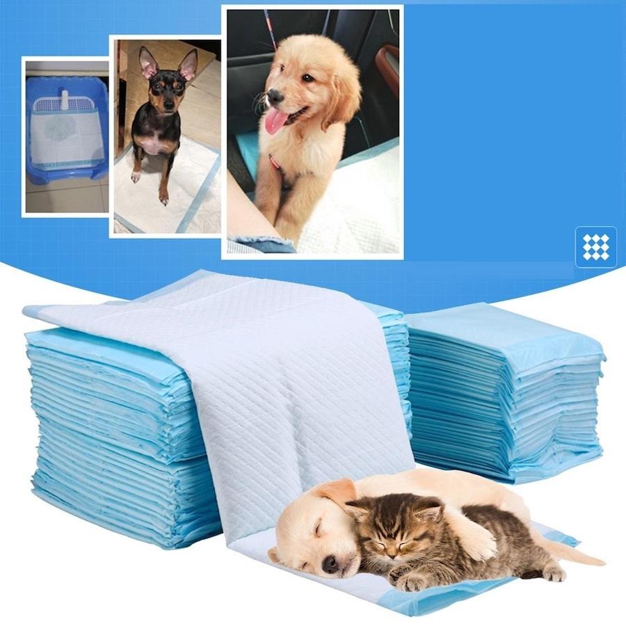Tấm lót vệ sinh cho chó